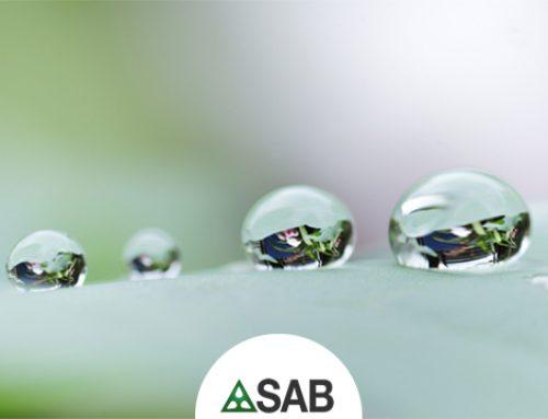 SAB ancora tra le 500 migliori aziende italiane